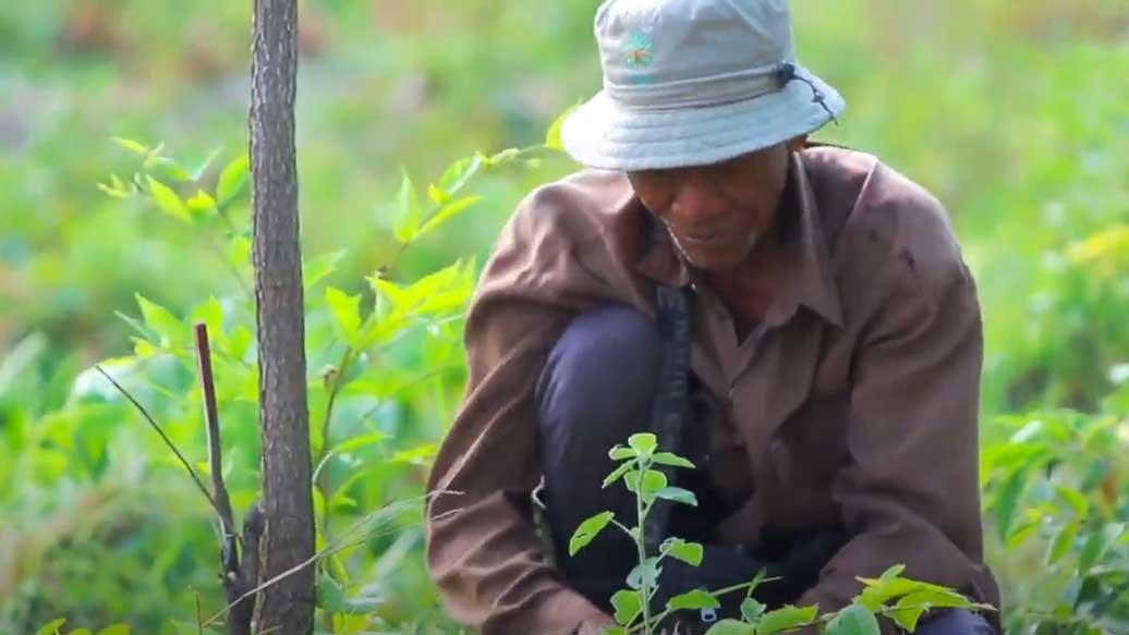 """เรื่องดีดี CPF EP.15 ตอน CPF รักษ์นิเวศ ลุ่มน้ำป่าสัก เขาพระยาเดินธง"""" ร่วมดูแลป่าอย่างยั่งยืน"""