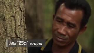 CPF | โครงการ ซีพีเอฟ รักษ์นิเวศ - ลุ่มน้ำป่าสัก เขาพระยาเดินธง (หมู่บ้านห้วยบง จ.ลพบุรี)